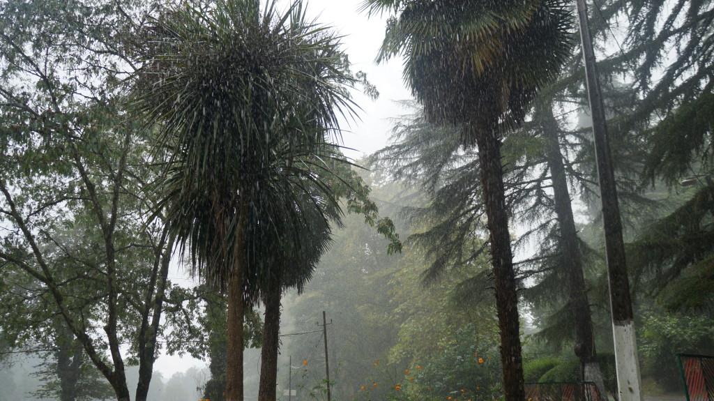 Дождь в Гудауте - Форелевое хозяйство