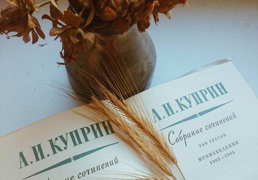 Биография Александра Ивановичка Куприна - интересные факты кратко