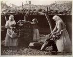 Что такое «шпэндрик», «швыдка Настя», «гарбузыння», «лошак», «бздюха» на языке кубанских бабушек?
