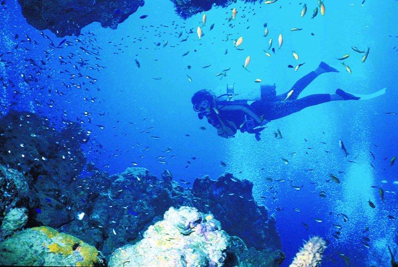 diving Halong