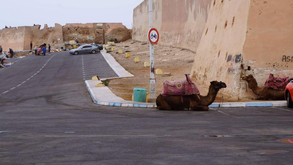 Туры в Агадир, Марокко