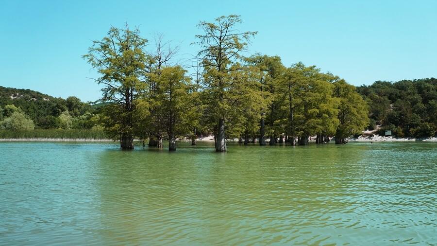 Как добраться до кипарисового озера в Сукко