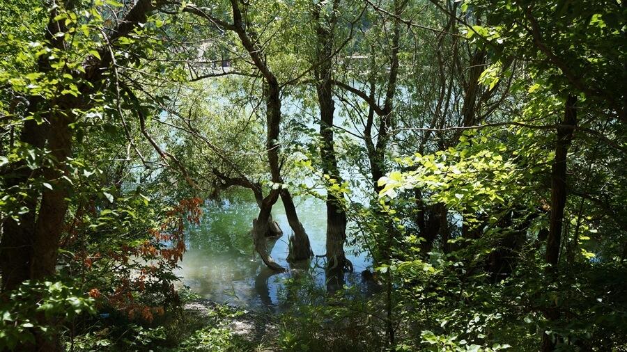 Как дойти до кипарисового озера