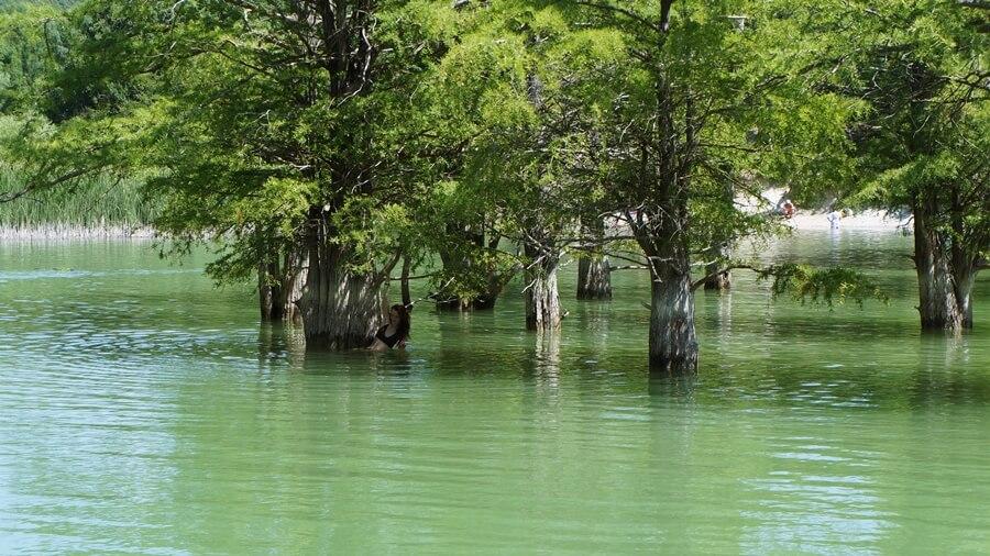 Кипарисовое озеро, Сукко