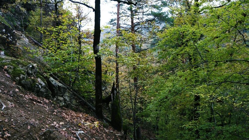 маршрут на Планческие скалы